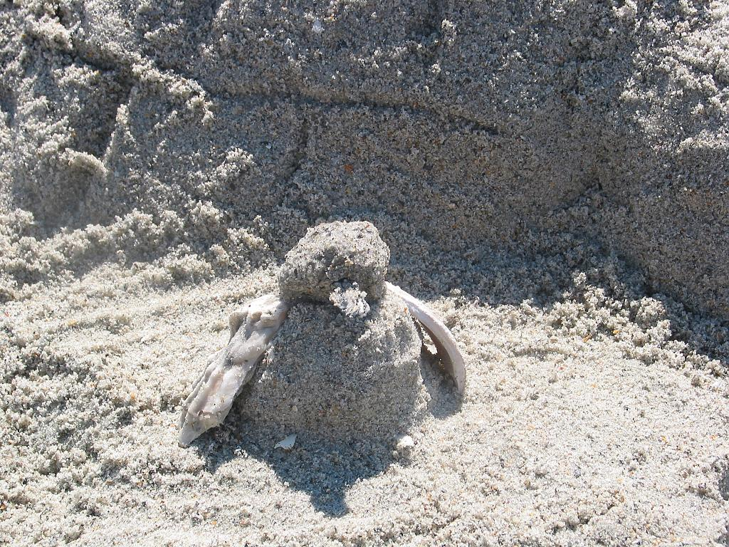 Sand Penguin! by Trixsy in Member's Categories